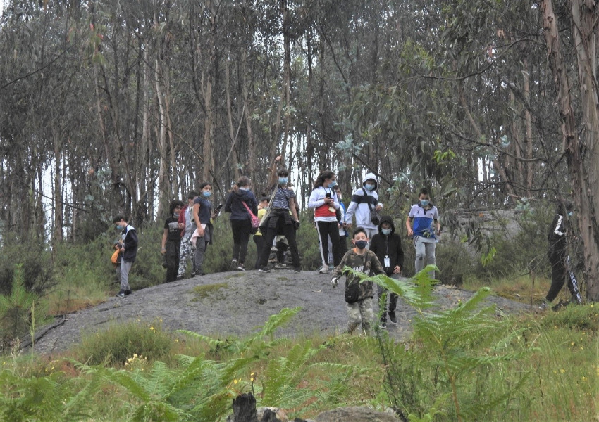 Percurso pela Floresta com o Agrupamento de Escolas Bernardino Machado